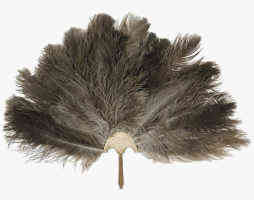 Egyptian Feather Duster
